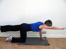 core exercises bird dog