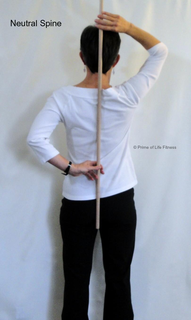 neutral spine rear